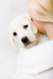 回到观点的妇女拉布拉多拥抱小狗  免版税库存图片