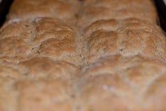 回家做的面包, healty食物,好饮食-浅DOF 图库摄影
