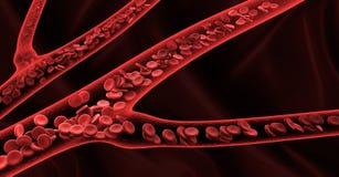回报在静脉的3d红血球 免版税库存照片