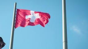 回报蓝天背景-无缝的圈的瑞士沙文主义情绪的慢动作3D 股票视频