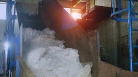 回收厂,排序和处理玻璃纸和聚丙烯,垃圾 库存照片