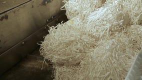 回收垃圾工厂 股票录像