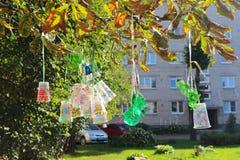 回收塑料瓶和杯子项目,上色用不同的颜色 塑料的第二生活 孩子项目在后院 库存图片