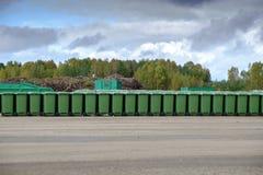 回收废物排序的植物 库存照片