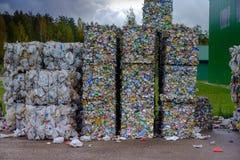 回收废物排序的植物 免版税库存照片