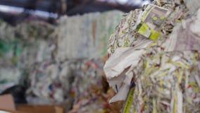 回收的纸和Carboard大工厂 股票视频
