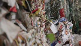 回收的纸和Carboard大工厂 影视素材