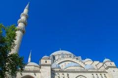 回教清真寺在土耳其 免版税图库摄影