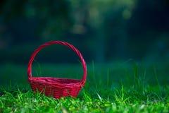 回来在梦想的红色篮子 免版税库存图片