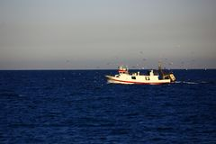 回来从捕鱼 免版税库存照片