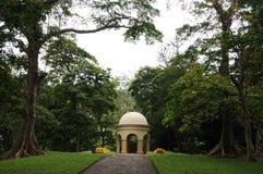 因为它包含4000个种类的一汇集独特的皇家植物园在Peradeniya被考虑作为一个最好在亚洲 库存照片