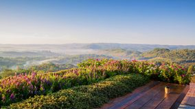 因此一杯咖啡在木桌上的在坐小山的上面和接管Khao-Kho山脉看法日出与多云fo 免版税库存图片