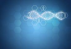 团结所有人的基因脱氧核糖核酸 与六角形的背景 库存图片