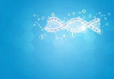 团结所有人的基因脱氧核糖核酸 与六角形的背景 免版税库存图片