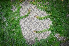 园林植物或常春藤或庭院树与老金属金刚石板材或老方格的钢板有生锈的 库存照片