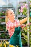 园艺中心妇女与盆的花一起使用 免版税库存图片