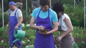 园艺中心的工作者在工作的 股票录像