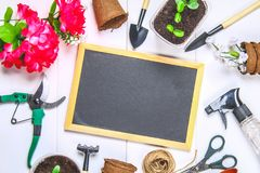 园艺工具、罐、幼木和黑板在一张白色木桌上 复制空间 顶视图 免版税库存照片