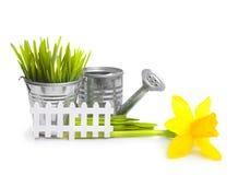 园艺工具、草和花 免版税库存照片