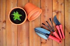 园艺工具和对象在老木背景 免版税库存照片