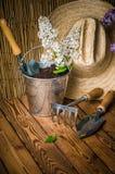 园艺工具和开花的白色丁香的分支 免版税库存图片