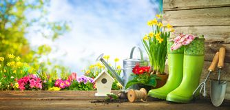园艺工具和春天花在大阳台 库存图片