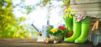 园艺工具和春天花在大阳台 免版税图库摄影