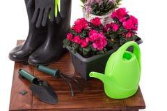 园艺工具和花例如喷壶,胶靴, 库存照片