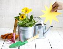 园艺工具和花抽象花卉概念 免版税库存图片