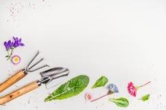 园艺工具和设备部件和花在轻的背景,顶视图,地方文本的 免版税库存图片