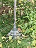 园艺工具在庭院里 免版税库存图片