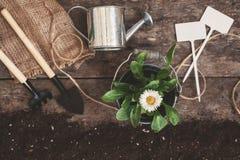 园艺工具,铁锹,犁耙,喷壶,桶, pla的片剂 免版税图库摄影