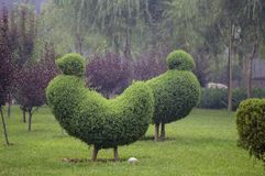 园艺设计 免版税库存图片