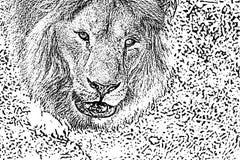 困厄的半音难看的东西黑白传染媒介纹理-真正的狮子头 创作摘要葡萄酒的背景 免版税库存照片