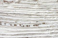 困厄的木纹理 免版税库存照片