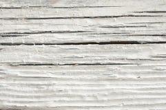 困厄的木纹理 库存图片