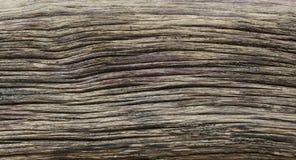 困厄的被风化的木纹理 库存照片