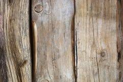 困厄的被风化的木纹理 库存图片