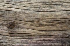 困厄的被风化的木纹理 图库摄影