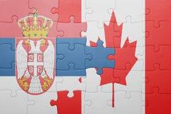 困惑与加拿大和塞尔维亚的国旗 免版税库存照片
