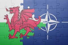 困惑与威尔士和北约国旗  免版税库存图片