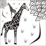 困长颈鹿 免版税库存照片