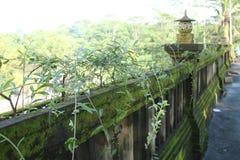 围住篱芭房子,古老和生苔版本12 库存照片