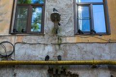 围场结构形状在圣彼德堡,俄罗斯 议院 免版税库存照片