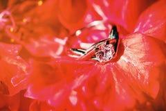 围拢与红色花,在金刚石头的特写镜头焦点的婚戒 免版税图库摄影