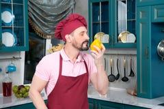 围裙的嗅黄色辣椒粉的年迈的厨师和帽子 免版税库存照片