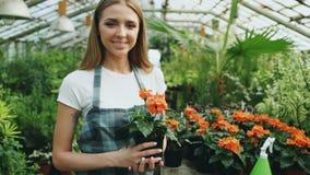 围裙的微笑和在手上的快乐的少妇庭院工作者画象拿着花自温室 免版税库存图片