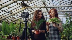 围裙的微笑的少妇花匠拿着花谈和记录网上vlog的录影博克 影视素材