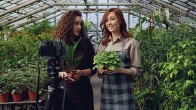 围裙的快乐的女性花匠是谈和拿着花,当记录网上博克的录影关于绿色时 股票视频