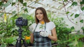 围裙谈的和记录的录影博克的年轻微笑的博客作者妇女卖花人她的关于从事园艺的网上vlog的 免版税库存图片